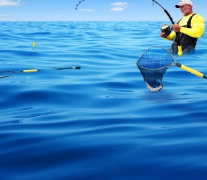 saltwater fishing products - ocean background