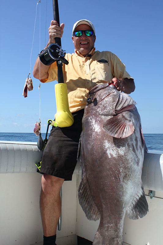 fish fighting belts alternative - cushit - big grouper caught