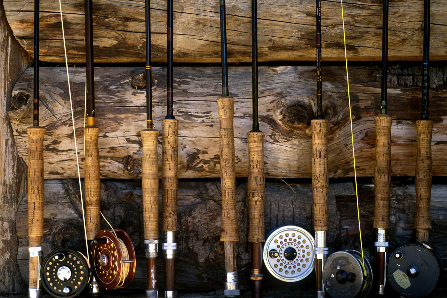 fishing poles - fly rods
