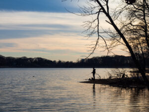 fishing bass spawning season from the shore